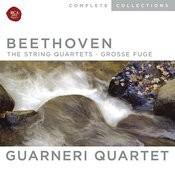 Beethoven, String Quartets; Grosse Fuge Songs