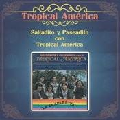 Las Inmortales De Los Doltons... En Concierto (Live) Songs