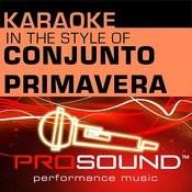 No Te Podias Quedar (Karaoke Instrumental Track)[In The Style Of Conjunto Primavera] Song