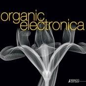 Organic Electronica Songs