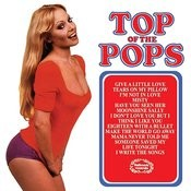 Top Of The Pops 46 Songs