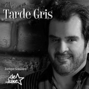 Tarde Gris - Single Songs