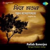 Pallab Banerjee Modern Songs