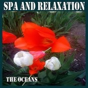 Spa And Relaxation Songs