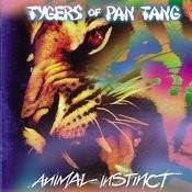 Animal Instinct Songs