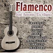 Cante Flamenco Songs