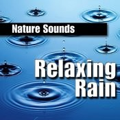 Relaxing Rain Songs
