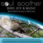 Bird Joy And Music - With Bells Every 3 Minutes For Relaxation, Meditation, Reiki, Massage, Tai Chi, Yoga, Aromatherapy, Spa, Deep Sleep And Sound Therapy Songs