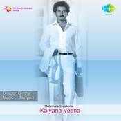 Veenakanna Metthanidi Song
