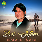 Zari Noor, Vol. 1 Songs