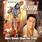 Mera Shyam Dhani Hai Great Songs