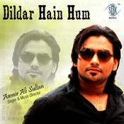 Dildar Hain Hum Songs