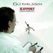 Rapport Från Dårhuset Songs