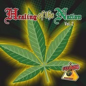 Healing Of The Nation - Volume 2 Songs