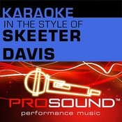 End Of The World (Karaoke Lead Vocal Demo)[In The Style Of Skeeter Davis] Song