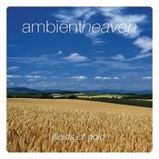 Ambient Heaven - Fields Of Gold Songs