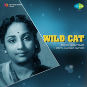 Wild Cat Songs