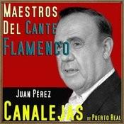 Maestros Del Cante Flamenco Songs