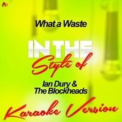 What A Waste (In The Style Of Ian Dury & The Blockheads) [Karaoke Version] Song