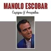 Espigas Y Amapolas Songs