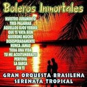 Boleros Inmortales Songs