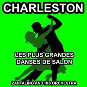 Les Plus Grandes Danses De Salon: Charleston Songs