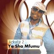 Ya Sha Mfumu Songs