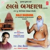 Halo Bagdana Songs