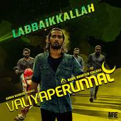 Valiyaperunnal Saju Sreenivas Full Mp3 Song