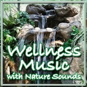 Wellness Music With Nature Sounds (Instrumental) Songs