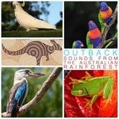 Didgeridoo Australian Aborigine Solo Song