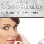 Pure Relaxation: Tranquil Moments Songs
