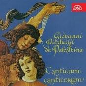 Palestrina: Canticum Canticorum Songs