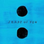 Shape of You Song Song