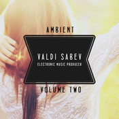 Ambient Vol. 2 Songs