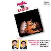 Phool Aur Kaante Songs Download Phool Aur Kaante Mp3 Songs Online