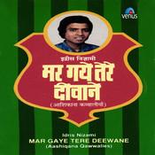 Tanhayi Ke Aalam Mein Song