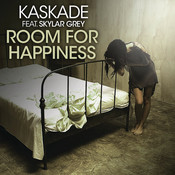 Room For Happiness (Feat. Skylar Grey) Songs