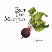 Beet the Meetles Songs