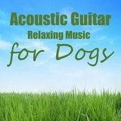 Acoustic Guitar: Relaxation Music For Dogs Songs
