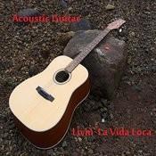 Acoustic Guitar: Livin' La Vida Loca Songs