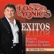Lastima De Amor Song