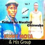 Tribute To Nwalieji Chinwuba, Vol. 7 Songs