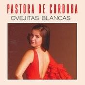 Ovejitas Blancas Songs