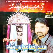 Ae Hai Zainab Watan Laut Kar, Vol. 10 Songs