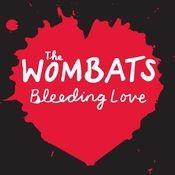 Bleeding Love Songs