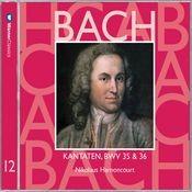 Cantata No.36 Schwingt freudig euch empor BWV36 : III Aria -