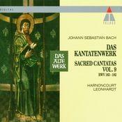 Bach : Sacred Cantatas Vol.9 : BWV 163-166 Songs