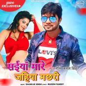 Saiyan Mare Jahiya Machhari Shankar Singh Full Mp3 Song