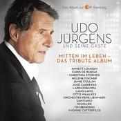 Mitten im Leben - Das Tribute Album Songs